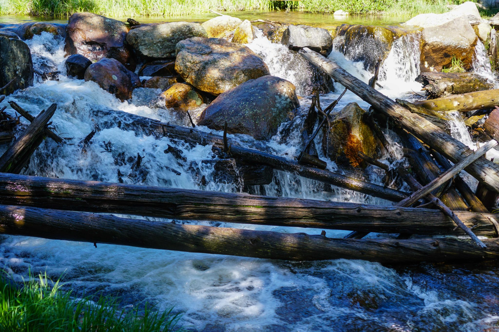 small waterfall with logs and driftwood in front