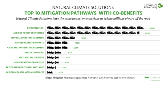 color image of graphic from climate change study exploring natural solutions