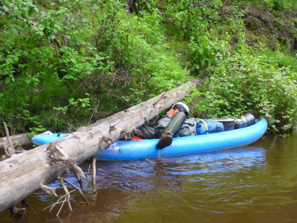 woman ducking under log in kayak