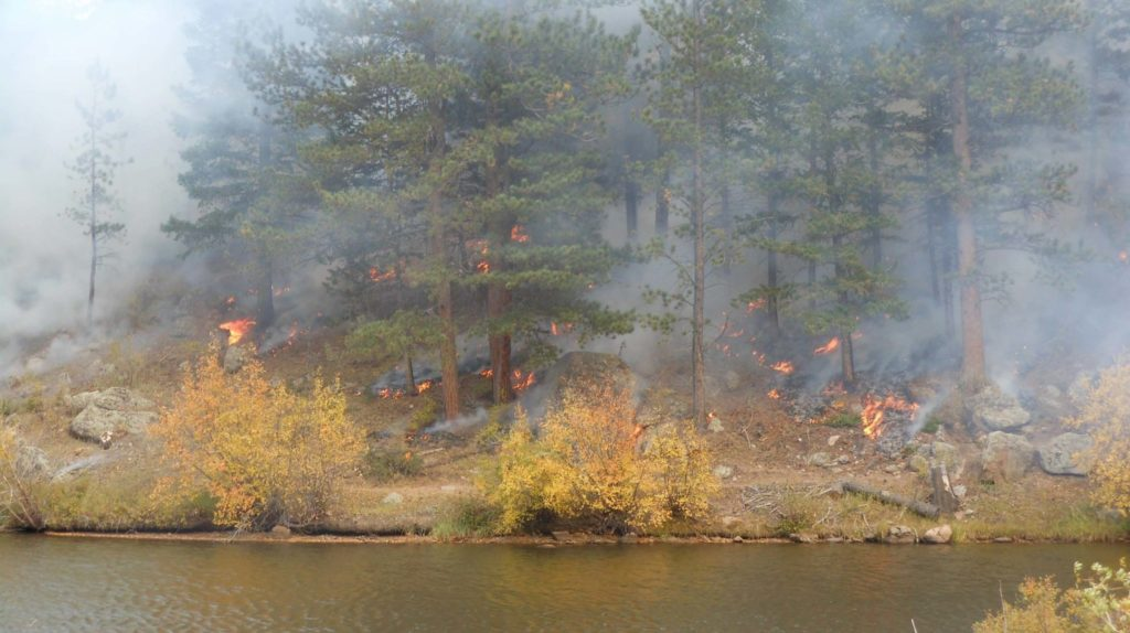 prescribed fire next to a creek