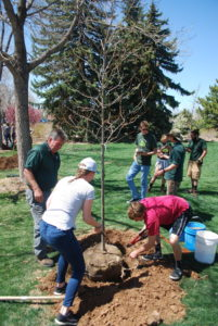 students and a CSU staffer plant a tree on campus