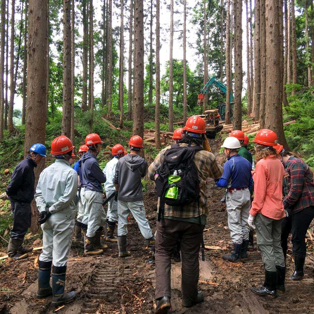 CSU and Yamagata forestry students in Japanese forest