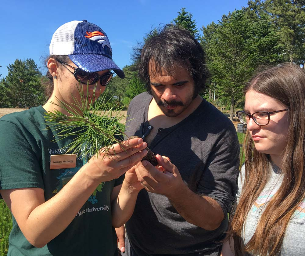 CSU students look at seedling