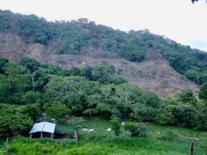 Biosphere Reserve: La Sepultura