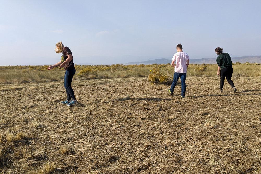 CSU restoration students spread seeds