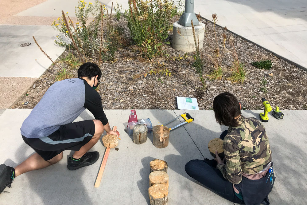 CSU restoration students build bee boxes