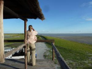 Laituri in Botswana.