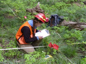 Vogeler collecting forest plot data during her central Idaho master's field research to calibrate lidar structure metrics to pair with bird surveys for modeling avian diversity patterns.