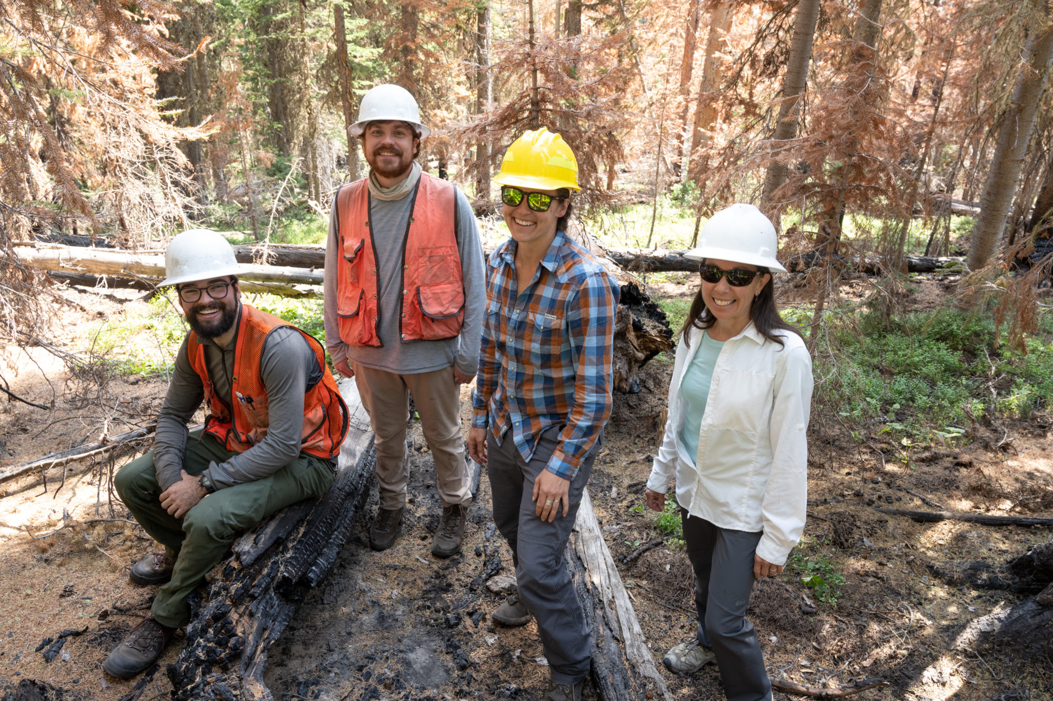 Michael McNorvel, M.S. student in Forest Sciences, Calvin McCartney, CSU Extension Intern, Karen Crumbaker, CSU Larimer County Extension, and Camille Stevens-Rumann, Assistant Professor of Forest and Rangeland Stewardship and Assistant Director of the CFRI, do research on the burn scar from the Cameron Peak Fire. July 20, 2021